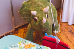 Dinosaur -It's a Zoo Twist